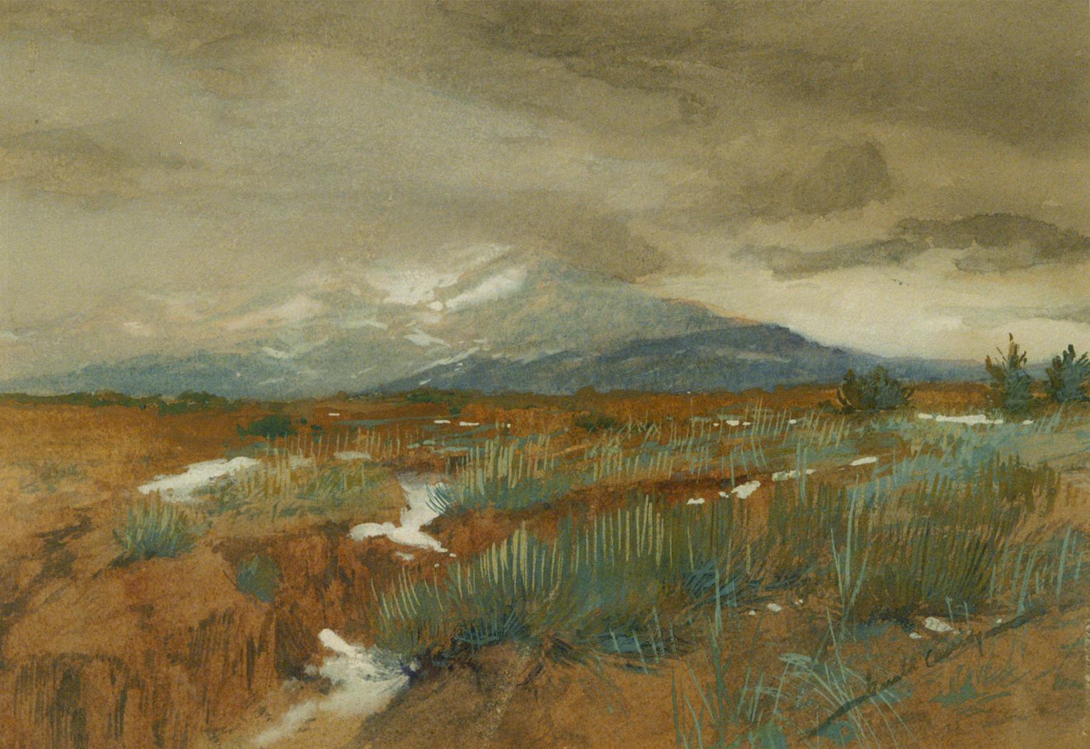 alt Spring Snowsc. 1900
