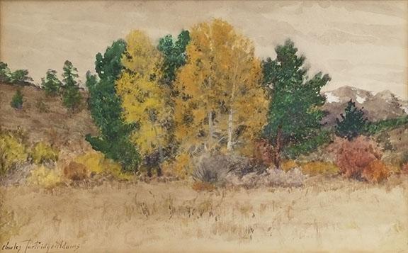 alt Untitled (Trees in Autumn, Colorado) c. 1900