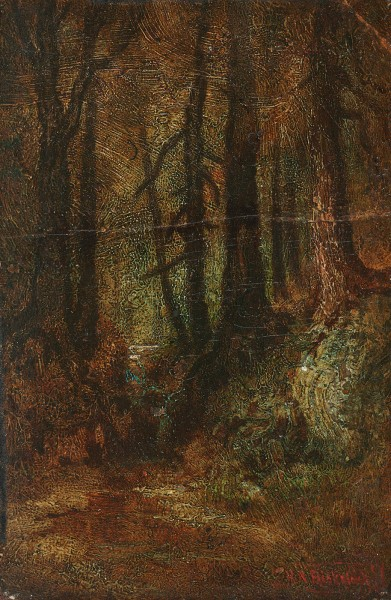 blakelock-woodland-stream-391x600