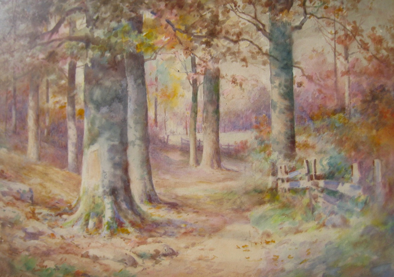bundy-autumnbeeches-cropped