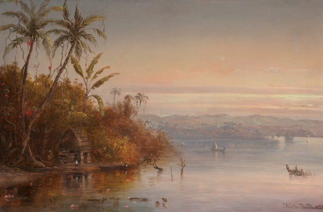 bush-tropical-sunset-18901-648x425