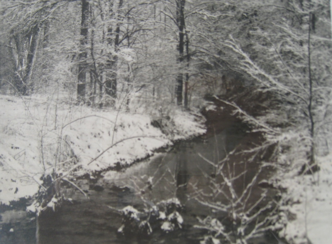 hohenberger-afterasoggysnow-cropped