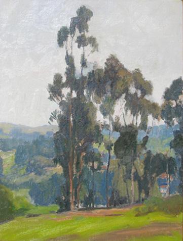 alt Eucalyptus Trees