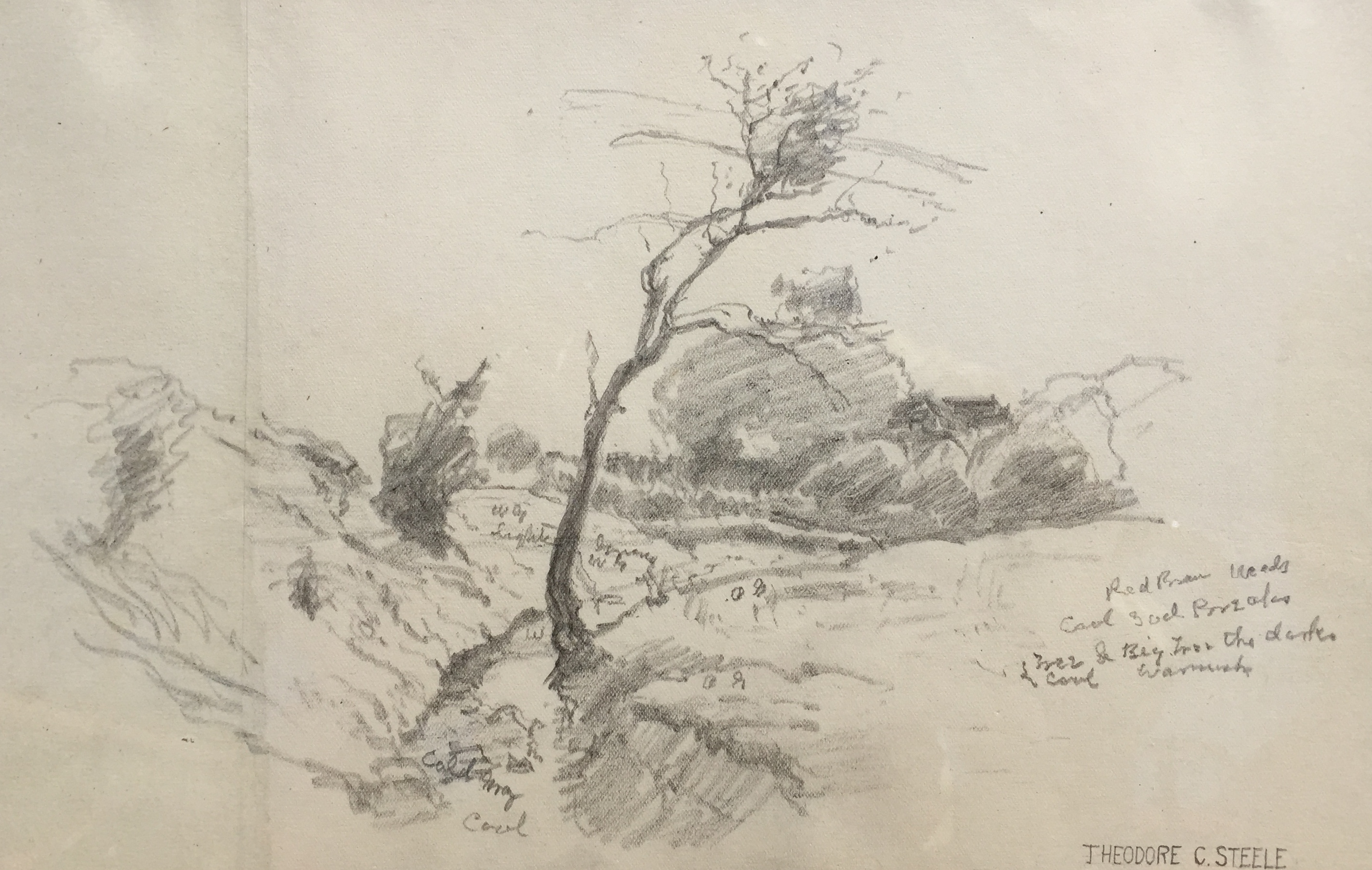 steele-landscapesketch-cropped