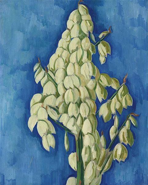 alt White Yucca