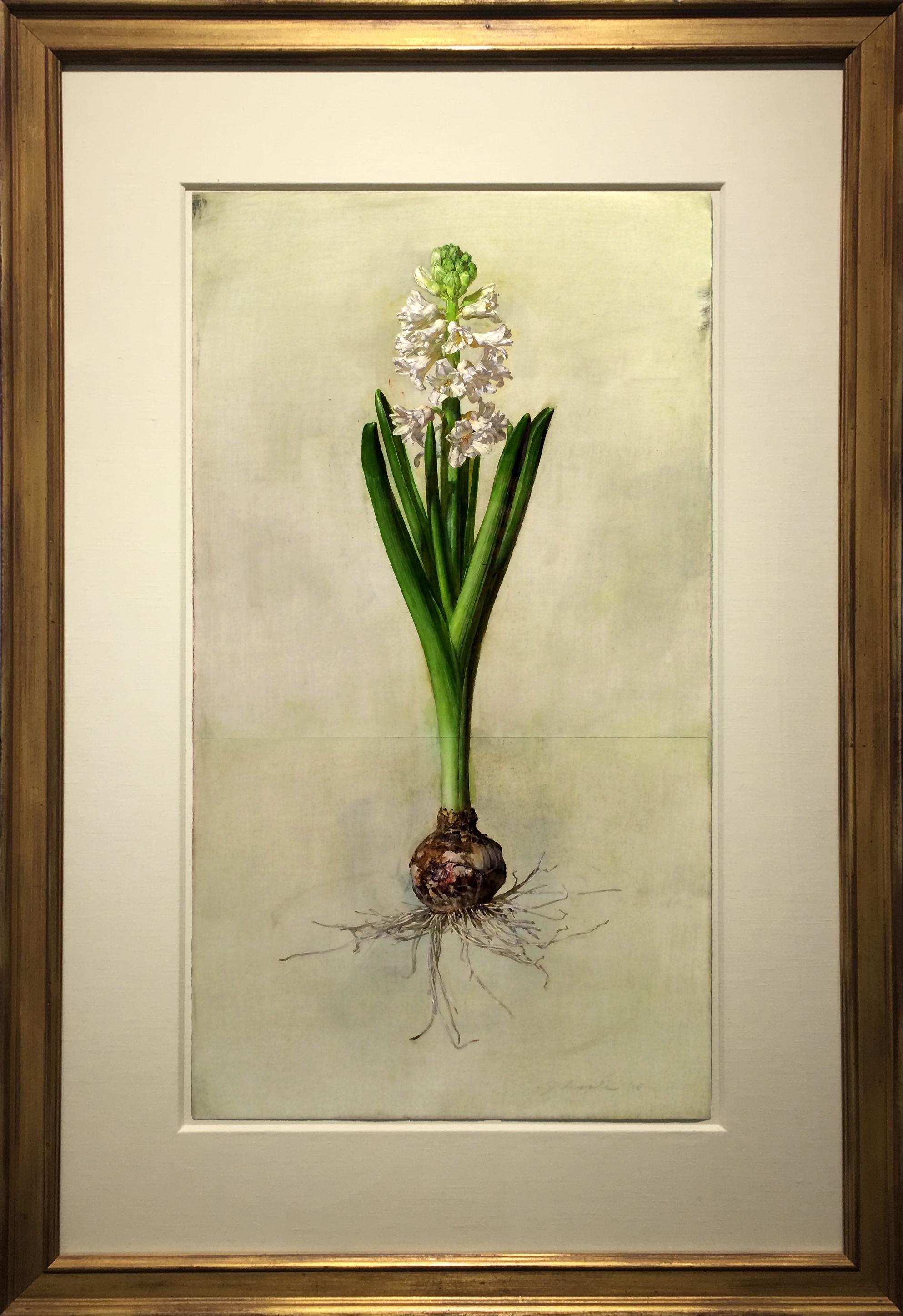 alt White Hyacinth