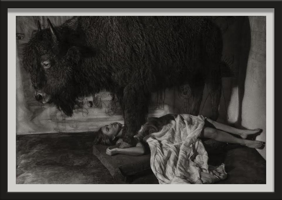 Casey and Buffalo Americana