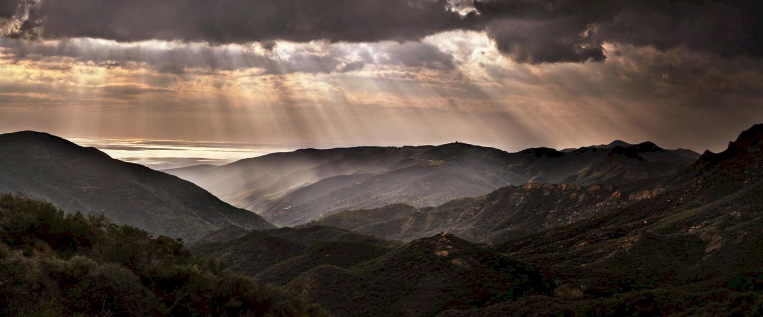 alt California Dreams