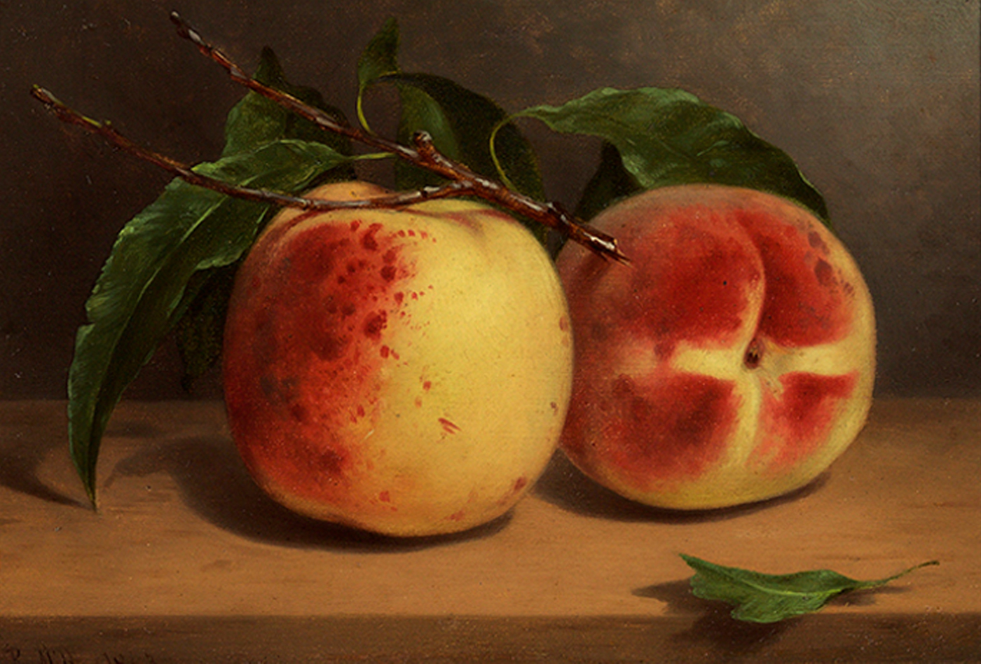 alt Study of Peaches from Nature, 1863