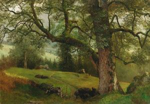 Bierstadt-A Trail through the Trees