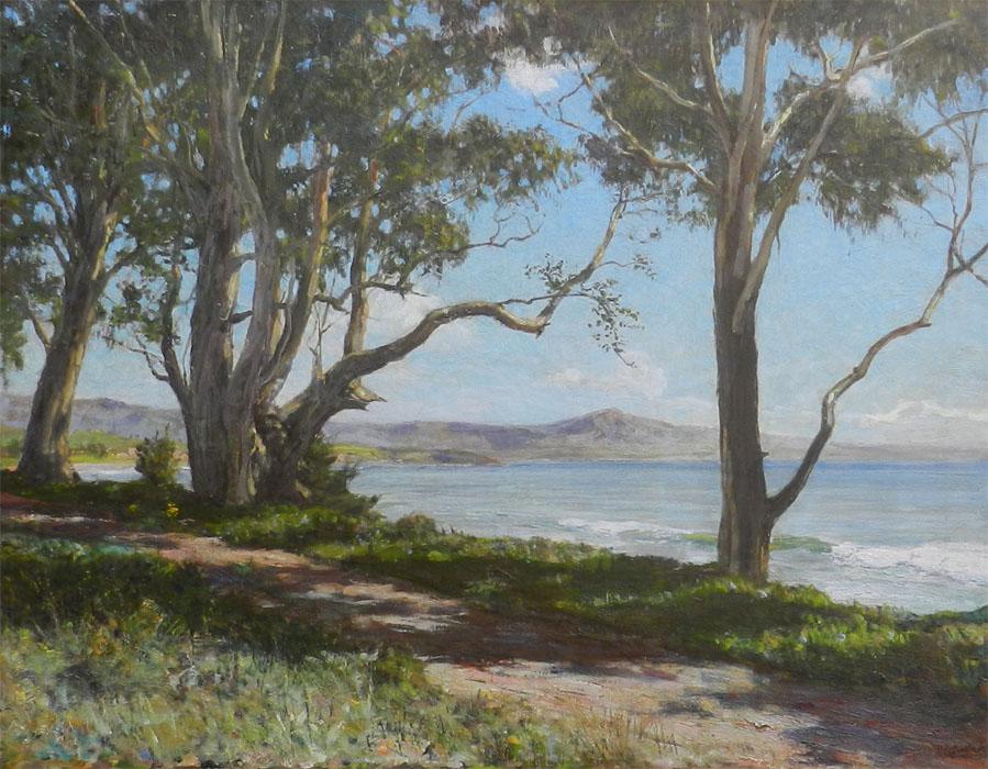 alt Mount Rincon from Eucalyptus Point