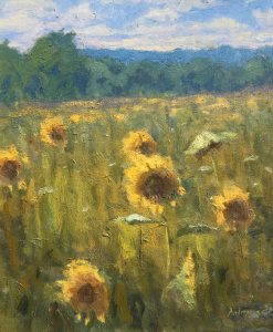 Doloresco-Sunflowers-cropped