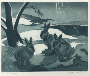 Mess-Family of Rabbits