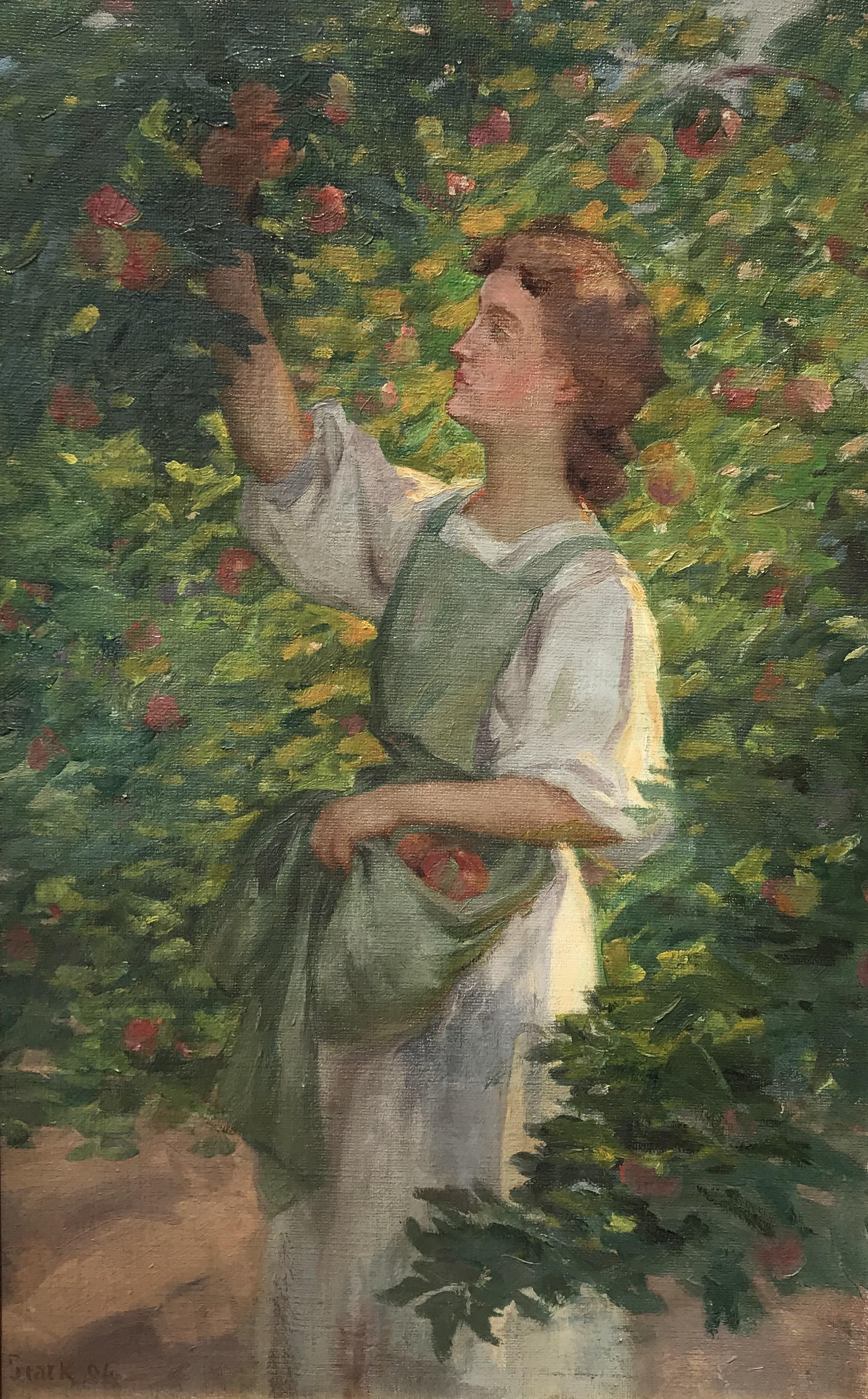 Stark-Gretchen Stark Picking Apples-cropped