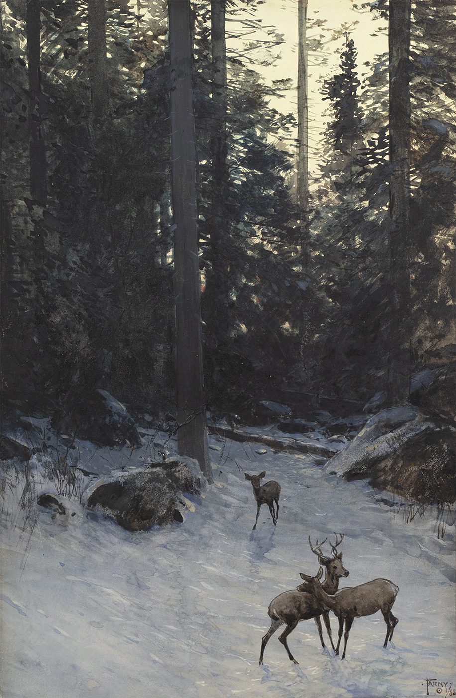 alt Deer in the Forest