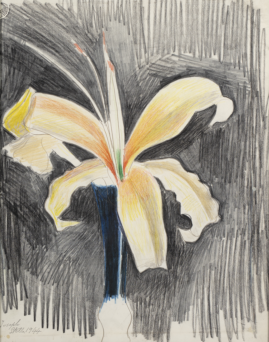 alt Yellow Lily