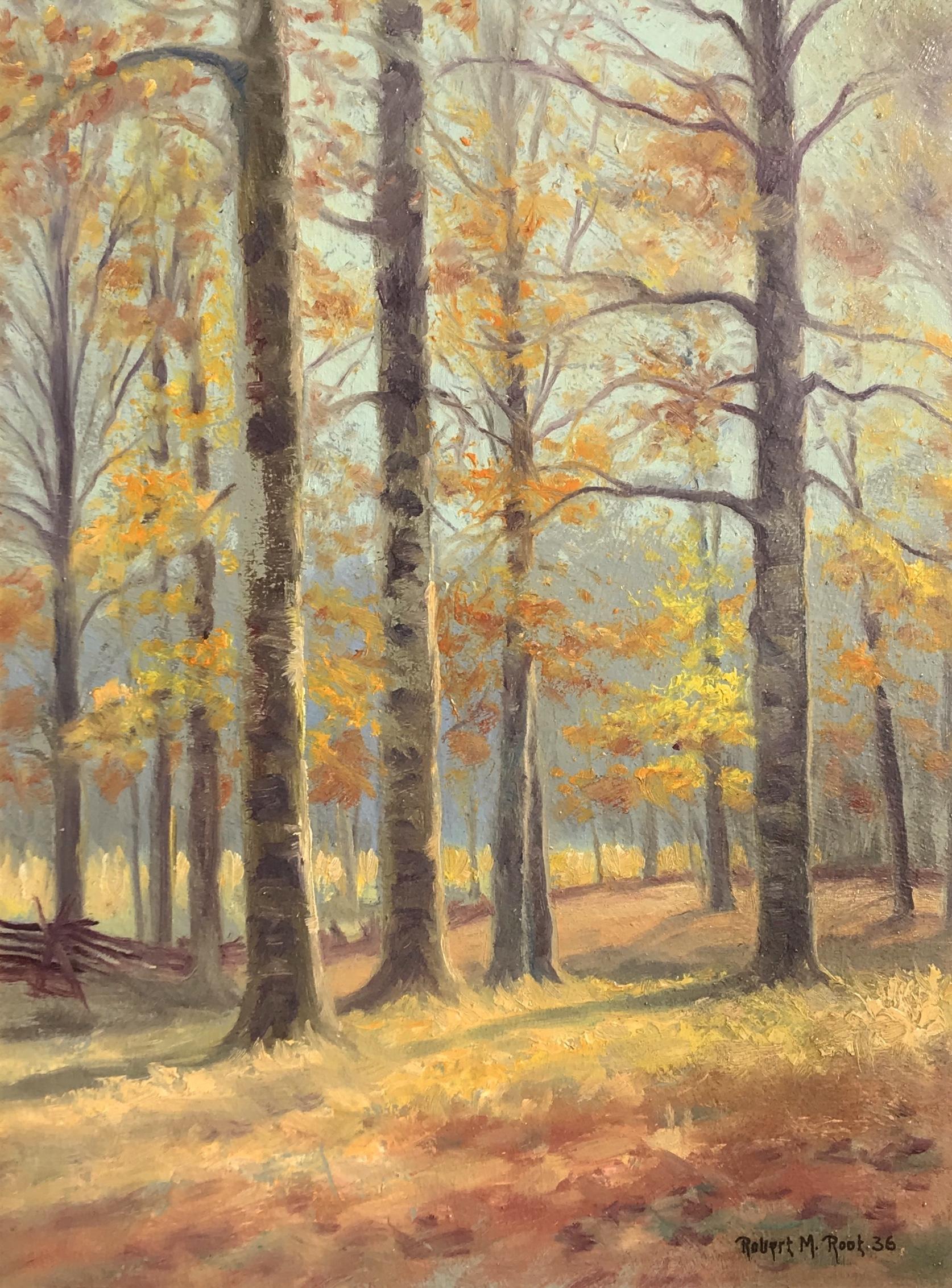 alt Beech Woods, Brown County, Indiana