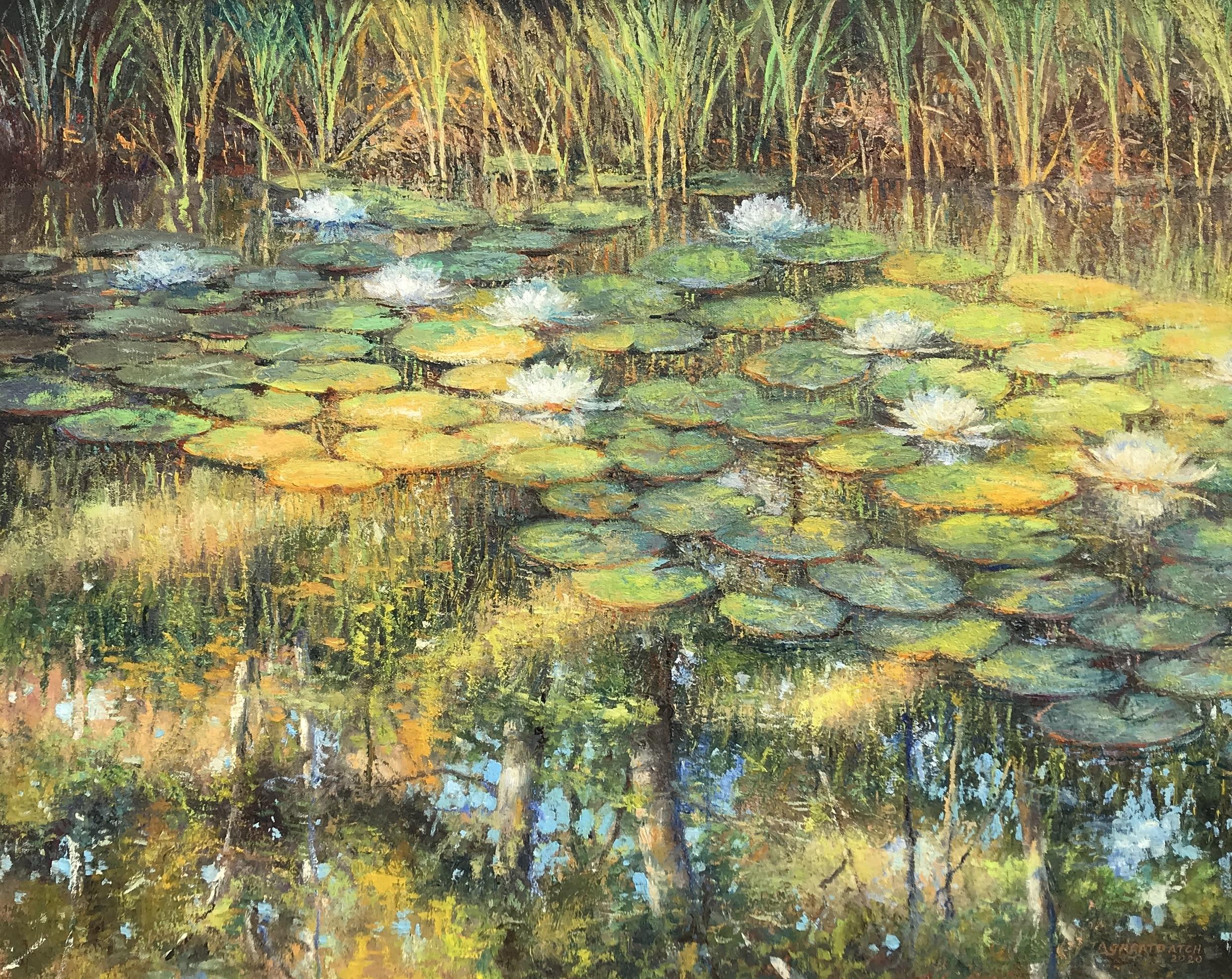 alt Shadows on the Pond